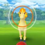 【衝撃】ポケモンレンジャーのメダルが3500超えのユーザーさんが発見される!