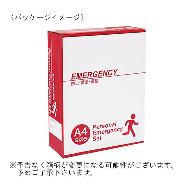 1日サポート災害対策セット 17点セット