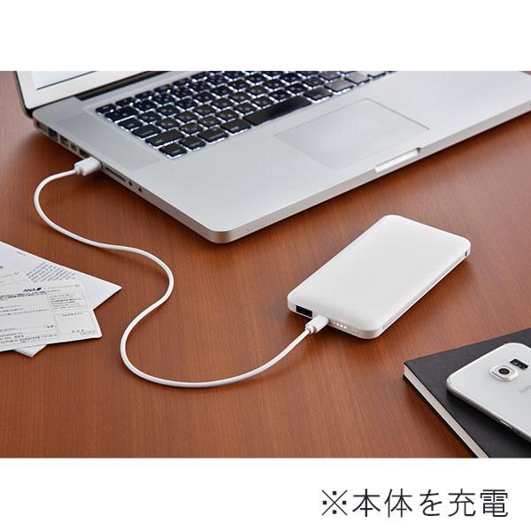 モバイルバッテリー 10000mAh PSEマーク付 2台充電対応