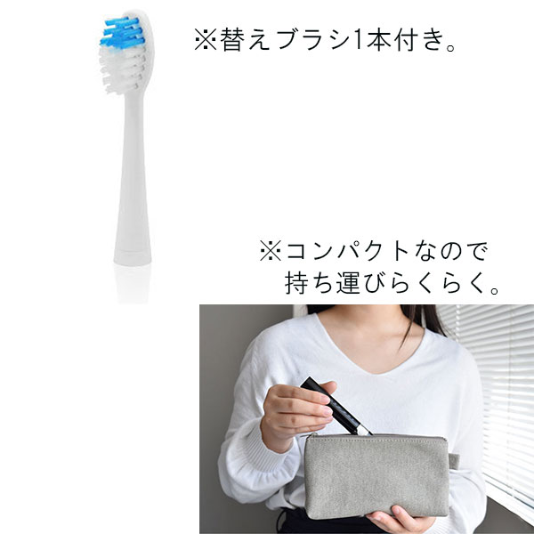 dretec(ドリテック)音波式電動歯ブラシ ドクター・ソニック TB-303