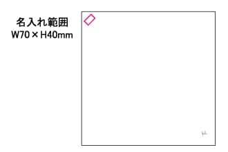 シビラ 綿 二四巾 ふろしき BALDOSA バルドサ W970×H970mm