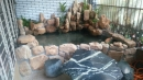 地面花園池