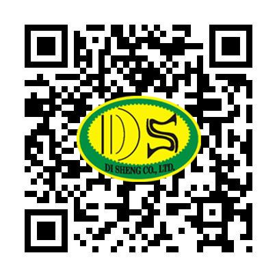 DS QR.jpg