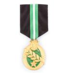 勳章與獎章.jpg