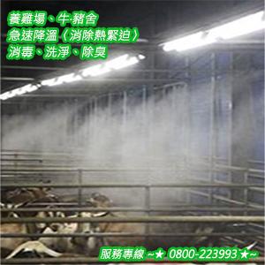 養雞場、牛‧豬舍急速降溫〈消除熱緊迫〉消毒、洗淨、除臭 0800-223993-20.jpg