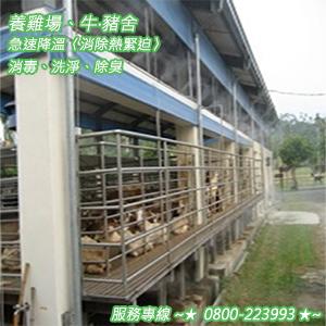 養雞場、牛‧豬舍急速降溫〈消除熱緊迫〉消毒、洗淨、除臭 0800-223993-30.jpg
