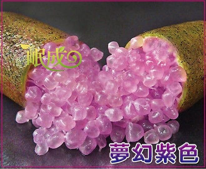 夢幻紫色.jpg
