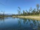 台東琵琶湖