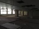 600多坪辦公室大改造 (4)