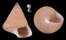 Vilvensi鐘螺 Calliostoma vilvensi