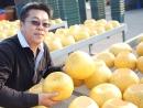 製作過程 曬柚子