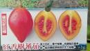 紅香樹蕃茄