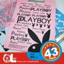 PLAYBOY A4板夾
