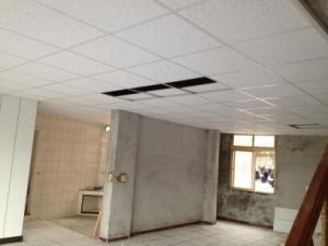 天花板-住宅明架天花板
