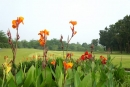 南寶106年度西拉雅高爾夫聯誼賽決賽名單