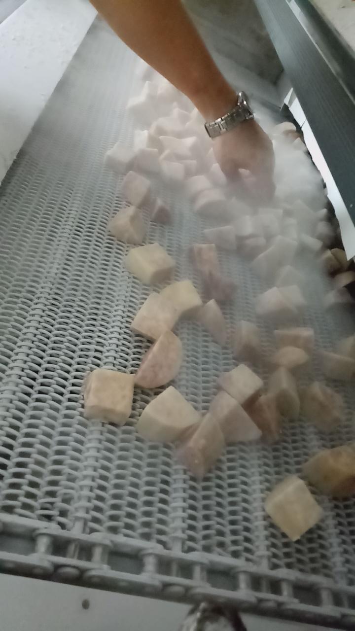 芋頭 急速冷凍 3.jpg