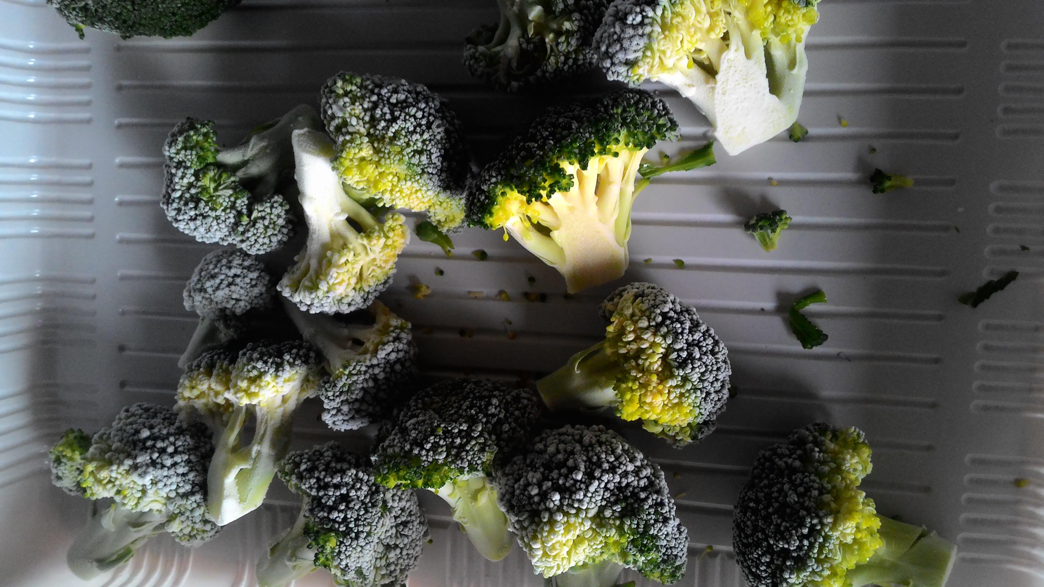 急速冷凍 青花菜 1.jpg