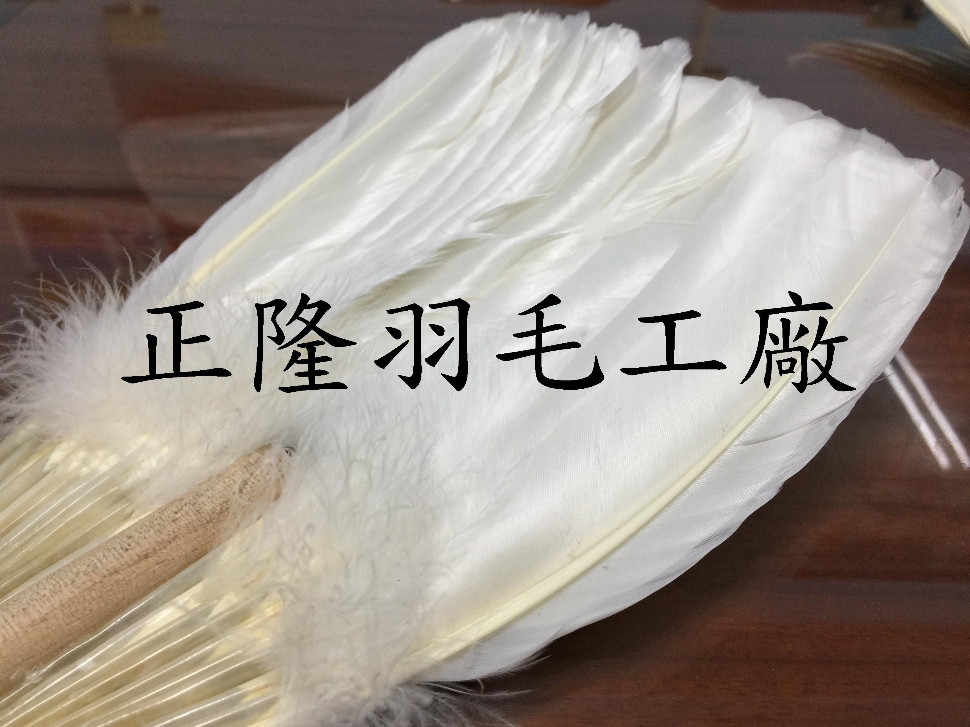 羽毛扇3_正隆.jpg