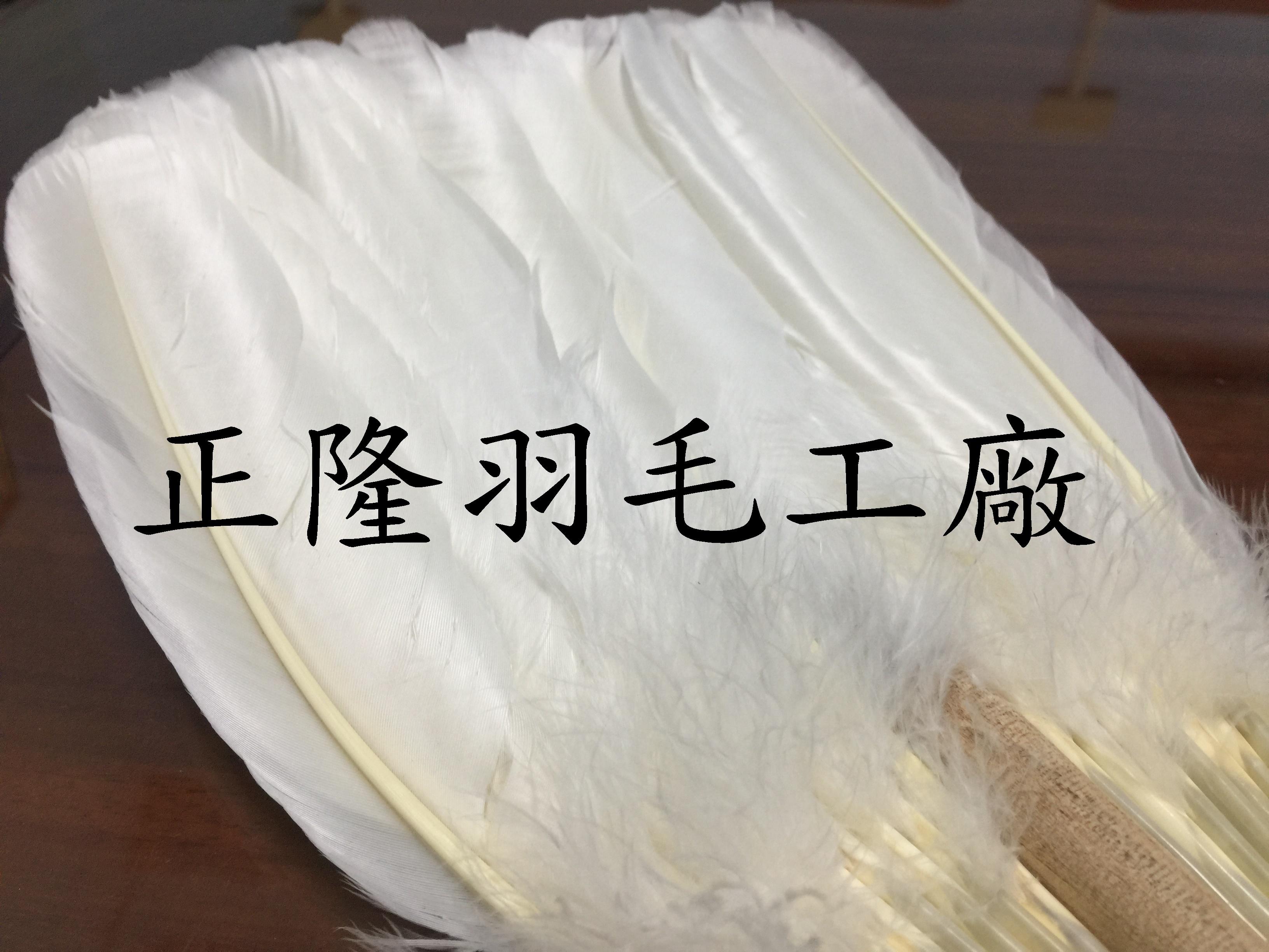 羽毛扇2_正隆.jpg