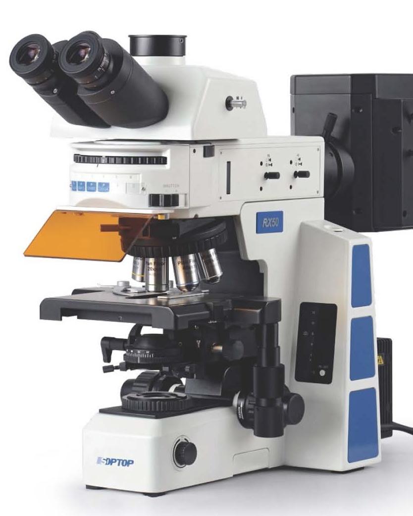 RX50螢光-2.jpg