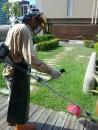 高雄園藝工程 (3)