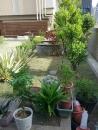 高雄園藝工程 (2)