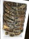 澎湖:黃斑魚600g600元(時價)