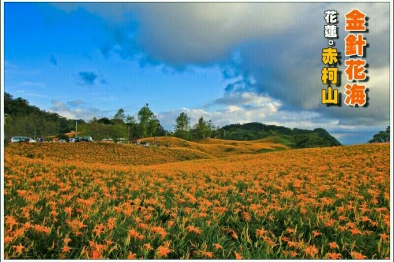 花東縱谷行程_180523_0018.jpg