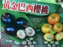 黃金巴西櫻桃