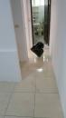 虎尾室內外地板清潔 (1)