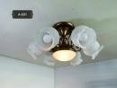 半吸頂燈具系列 (內有多款式展示)