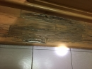 木地板遭到白蟻啃食破裂