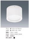 LED 12W 擴散型桶燈