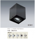 MR 吸頂式盒燈/1燈