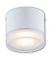 LED COB 6W 桶燈