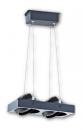 AR111 複合式吊燈/雙燈