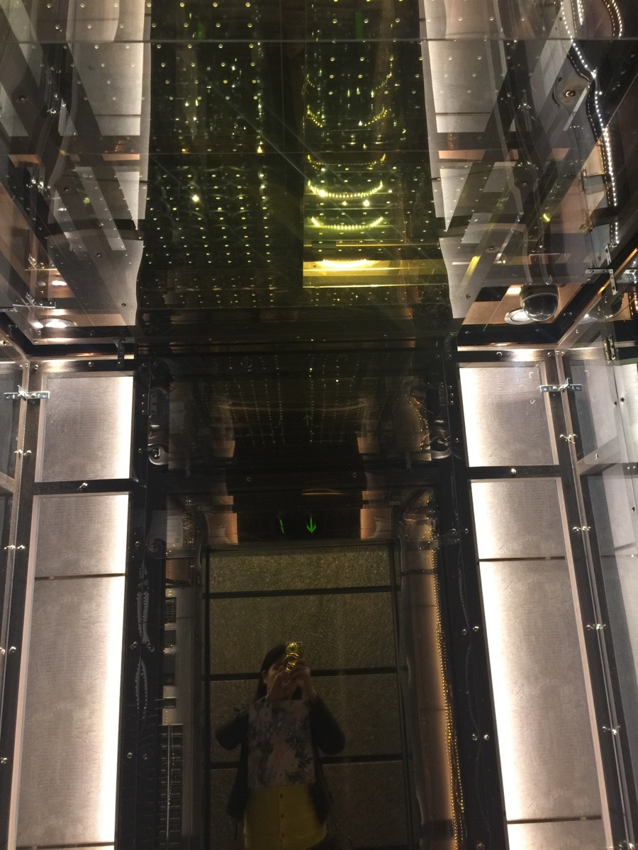 電梯天井防護.jpg