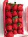 有機草莓透明盒裝(小級)