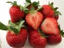 有機草莓精緻禮盒裝(大級)