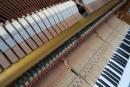 鋼琴調音、維修、檢測 (2)