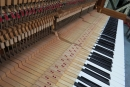 鋼琴調音、維修、檢測 (3)