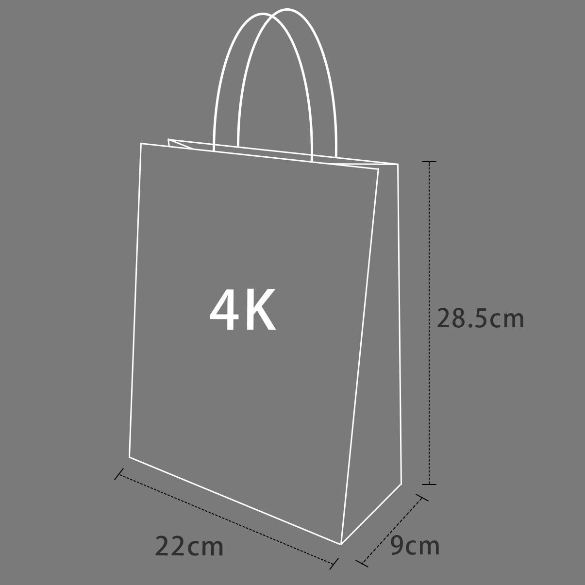 《袋袋相傳》M9 春節紙袋-招財貓4K紙袋1.jpg