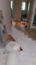 歐洲原裝 進口耐磨地板 (施工規範及完工照片)6
