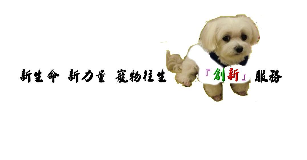 新生命 新力量 寵物往生創新服務.1060211.jpg
