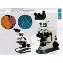 偏光顯微鏡