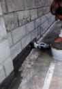 牆面偶角防水工程