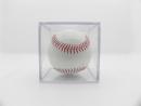 簽名球框+空白球棒球