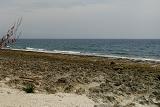9厚石裙礁.jpg