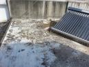 莊進路 民家 屋頂漏水維修