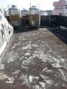中山路二段 屋頂防水